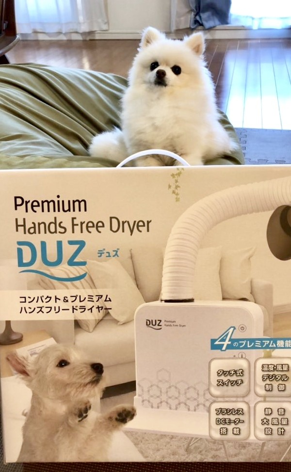 【DUZ】ハンズフリードライヤー